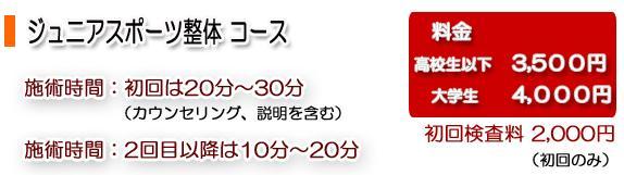 junior_price.JPG